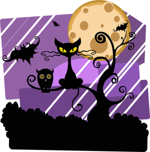 Chat lune hallowween